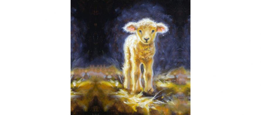 The Lucky Fairy Lamb