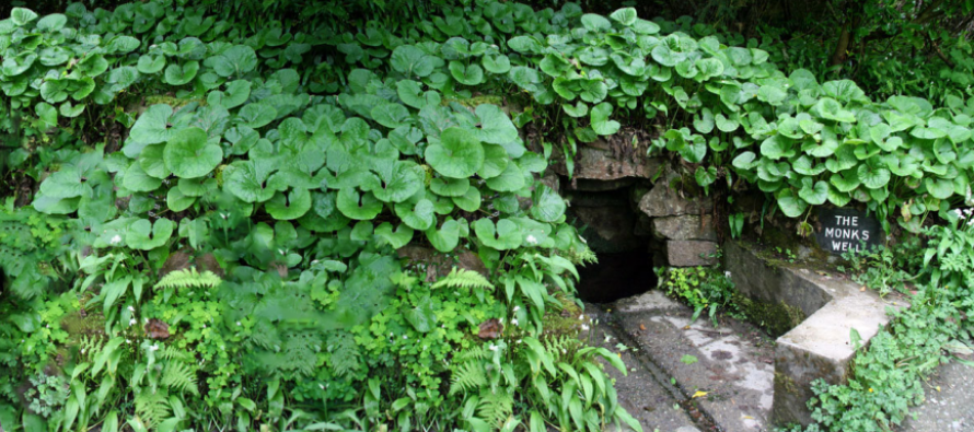 The Monks' Well