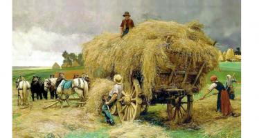 Harvest Customs