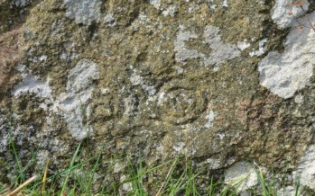 Ballaragh Neolithic Spiral Stone