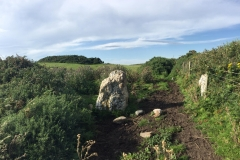 The gateposts and the first of the quartz stones. The gorse in the distance on the upper left is The Druid's Circle.